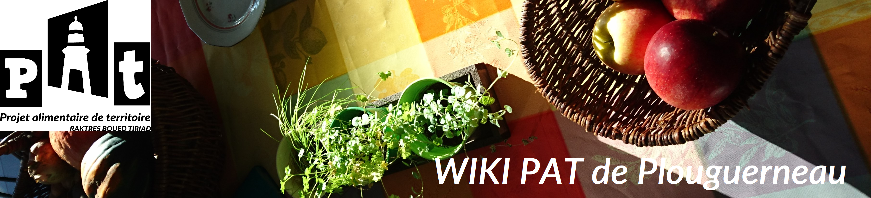 image bandeau_wiki.png (4.6MB)